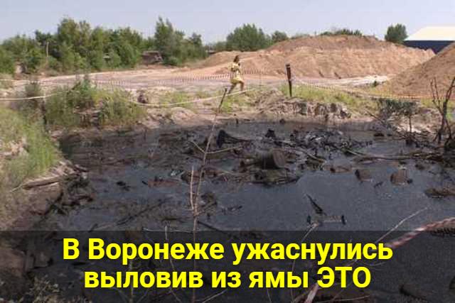 В Воронеже ужаснулись выловив из ямы это