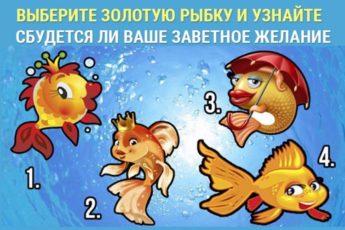 Выберите золотую рыбку и узнайте, сбудется ли загаданное желание