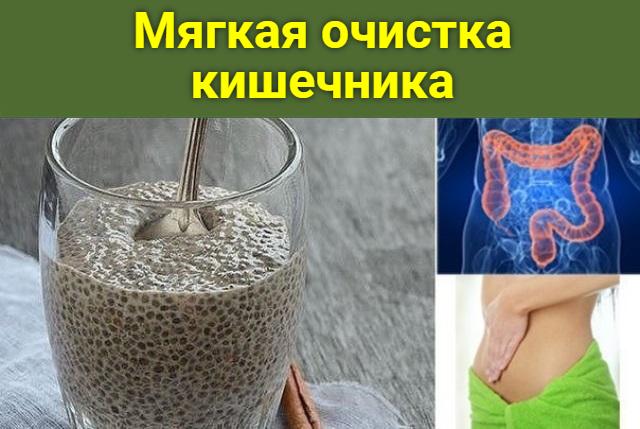 Мягкая очистка кишечника