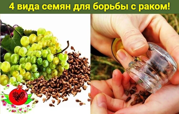 4 вида семян для борьбы с раком!