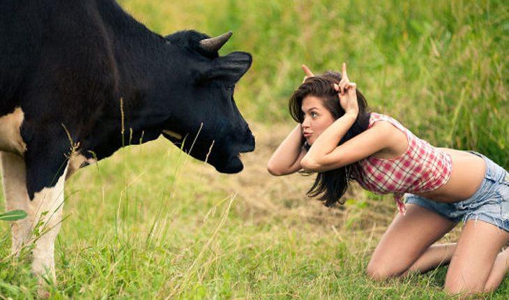 6 знаков зодиака, про которых скажут «упертый, как баран»