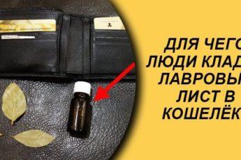Лавровый лист в кошельке — самый мощный денежный магнит