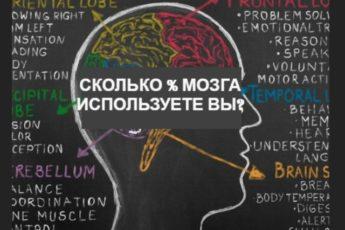 Тест: Сколько процентов потенциала своего мозга вы реально используете?
