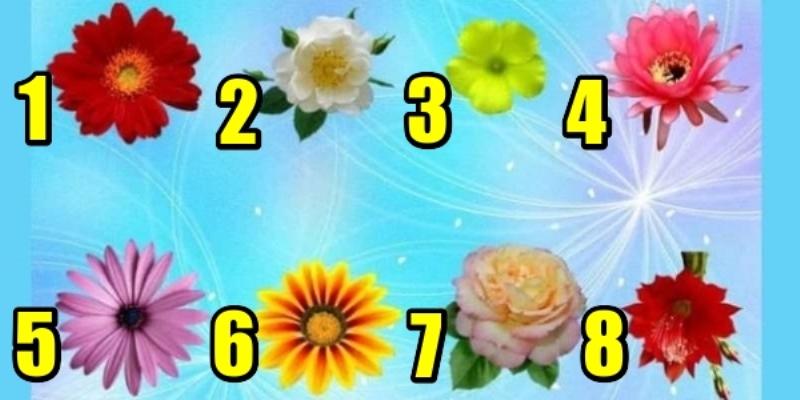 Выберите цветок и узнаете, что говорит Вам Вселенная