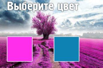 Цветотест, который откроет всю правду о вашем характере