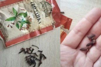 Семейный врач велел жевать сушеную гвоздику