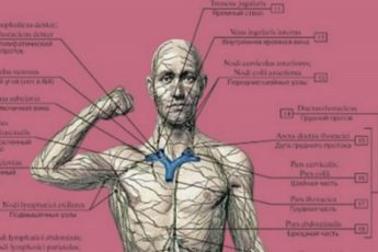 Сломана лимфа — значит мы будем плеваться через кожу