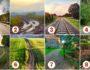 Тест. Выберите дорогу, которая приведет Вас к счастливому будущему