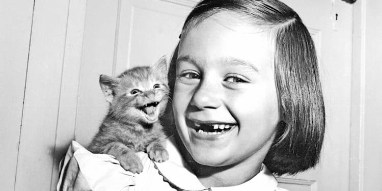 Секрет улыбающегося котенка (1955) и еще 7 классных кадров от фотографа, который 70 лет снимал кошек