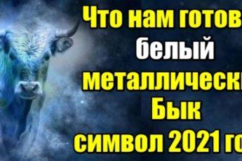 Что нам готовит белый металлический Бык - символ 2021 года