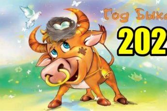 Китайский гороскоп-2021: что сулит нам год Быка