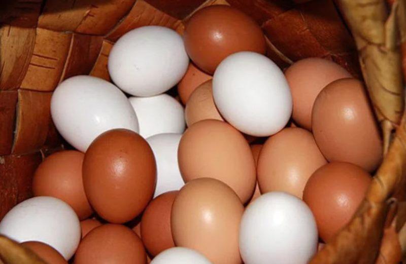 Самое доступное леkарство лежит у Вас в холодильнике. Лечебная сила обычного яйца