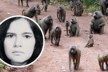 История о Марине, которую 5 лет воспитывали обезьяны