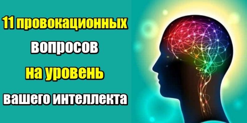 11 провокационных вопросов на уровень вашего интеллекта