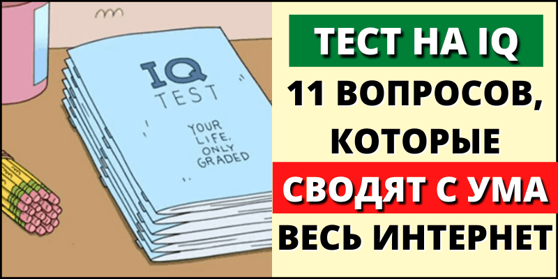 Тест на IQ: 11 вопросов, которые сводят с ума весь интернет
